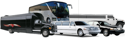 san diego limo service party bus rental